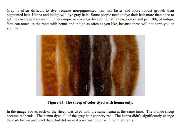 If we will apply the same type of BAQ Henna, my hair will turn out like #5 and my mother's will turn out like #6.